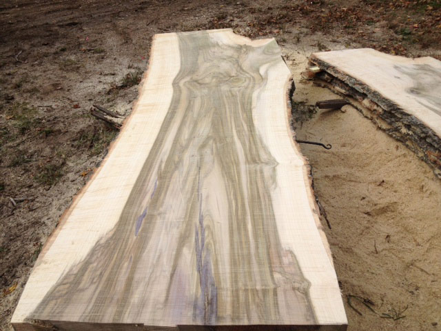 Tulip Poplar Wood Slabs Brimfield Shed